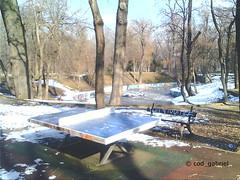 Winter in Kiseleff Park, Bucharest - taken with my son's ItsImagical (Img) 2 Mpx toy camera (cod_gabriel) Tags: itsimagical toycamera kiseleff parculkiseleff winter iarnă iarna bucureşti bucuresti bucharest bukarest boekarest bucareste bucarest romania roumanie românia pingpong tabletennis tenisdemasă tenisdemasa bench