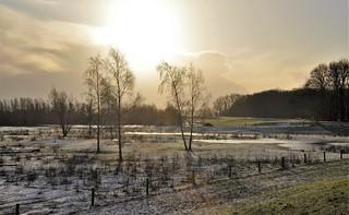Beetje wit / Little white...12-2-18