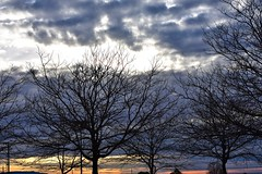 Winter day (thomasgorman1) Tags: trees cloudy clouds winter sunset dusk sundown southwest nm nikon nature outdoors