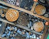 Hole Sweet Home (Dan Daniels) Tags: bees solitarybees patterns wood woodpatterns gardens riehenbsch autalriehench nests audand sticks tubes