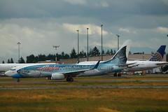 AlaskaN559AS-B738-TaxiSEA (formulanone) Tags: n559as fish seatac ksea sea seattle airplane aircraft