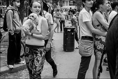 2_DSC6212 (dmitryzhkov) Tags: russia moscow documentary street life human monochrome reportage social public urban city photojournalism streetphotography people bw dmitryryzhkov blackandwhite everyday candid stranger crowd mob dog pet outdoor select