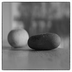 To steiner (Krogen) Tags: norge norway norwegen akershus romerike ullensaker mogreina krogen sonya6000 omzuiko50mm omzuikolens svarthvitt svhv blackwhite bw silverefexpro