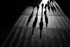 traffic (Dan-Schneider) Tags: streetphotography street silhouette shadow schwarzweiss blackandwhite bw monochrome moment light fuji fujix