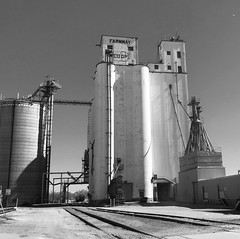 The Grain Elevators (pam's pics-) Tags: ks kansas us usa america midwest elevators farming farm tracks traintracks grainelevators beloitkansas bw smalltown pamspics pammorris appleiphone iphone7 cameraphone mobilephonephotography