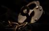 Unchain My Heart (rickhanger) Tags: lock locked lockandchain padlock unchainmyheart raycharles theblues setmefree