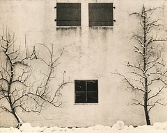 just a wall (franzbog60) Tags: lithprint lith moerschmasterset orwo116 hasselblad500cm ilfordhp5