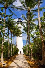 Der Leuchtturm von Key Biscayne (Markus Lenz) Tags: allee amerika bauwerkegebäude bäume diewelt florida fusgänger keybiscane landverkehr leuchtturm miami orte orteallgemein palmen pflanze pflanzen sonstigegebäude strase technik turm usa vereinigtestaaten verkehr weg