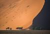 Namibia Sossusvlei (Sas & Rikske) Tags: namibia sossusvlei deadvlei sunrise dune dunes tree landscape mars afrika africa east deblauwevogelnamibië de blauwe vogel namibië 2017