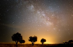 Milky Way above Alqueva (lemessin) Tags: trees nightsky starrynight darksky nightscaper milkyway galaxy astrophotography nikon portugal alqueva night