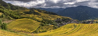 *Ping'an Terraced Rice Fields @ Panorama II*