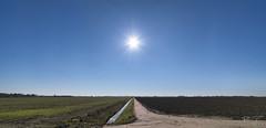 Rural landscape. (PvRFotografie) Tags: nederland holland hoeksewaard landscape landschap nature nauur natural view uitzicht rural landelijk lucht sky sonyilca99m2 blauw blue 1224mm sigma1224mm sigma12244556 sigma1224mmf4556dgiihsm