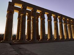 Columnas en el patio de Amenhotep III, Templo de Luxor, Luxor, Egipto (Edgardo W. Olivera) Tags: columna patio court amenhotepiii luxor tebas architecture templo temple panasonic lumix gh3 edgardoolivera microfourthirds egipto egypt mediooriente orientepróximo middleeast