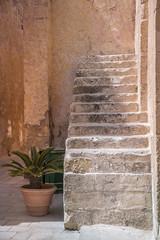 Stairs to nowhere (Sizun Eye (OFF for a while)) Tags: stairs escalier victoria gozo malta malte shadow light nowhere oldtown old pretty cycas mediterranean sud southerneurope europe sizuneye nikond750 tamron2470mmf28 rabat street