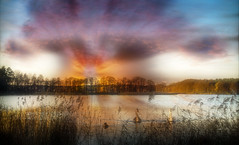End of the day. (augustynbatko) Tags: sunset lake nature landscape water sky clouds trees birds swans reed tree