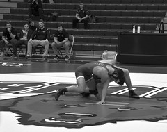 BRO-STA 184 2018-01-13 DSC_7891 bw (bix02138) Tags: brownuniversity brownbears stanforduniversity stanfordcardinal pizzitolasportscenter pizzitolasportscenterbrownuniversity providenceri january13 2018 wrestling sports intercollegiateathletics athletes jocks ©2018lewisbrianday 184 184pounds judahduhm ninobastianelli