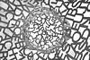 Contruyendo palabras (osruha) Tags: zaragoza saragossa españa espanya spain aragón aragó expo exposición exhibition expozaragoza elalmadelebro jaumeplensa escultura esculture palabras paraules words blancoynegro blancinegre blackandwhite bw bn monocromo monochrome monocrom nikon nikonistas d750 flickr