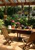 The Backyard Garden (philipbouchard) Tags: garden backyard flowers patio chairs hydrangea tools gardening sydney newsouthwales australia deewhy pots nsw