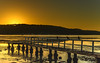 Sunrise Waterscape (Merrillie) Tags: daybreak woywoy landscape nature australia ravens foreshore newsouthwales earlymorning nsw brisbanewater bay wharf morning dawn coastal water sky waterscape sunrise centralcoast ducks outdoors