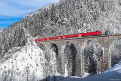 Winter im Höllental 2 ((Mathias Dersch)) Tags: höllental höllentalbahn schwarzwald sonne schnee seebrugg freiburg rb ravenna ravennabrücke ravennaviadukt dbregio südbaden br143 143640