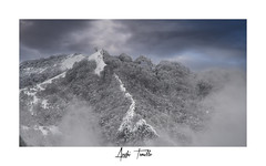 _ATP4690 (anahí tomillo) Tags: nikon d7500 nikond7500 nikkor naturaleza nature nieve niebla snow fog montaña mountain paisaje landscape asturias spain españa europa europe