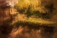 River Ver (RCARCARCA) Tags: willow bridge photoartistry water reflections canon 2470l shadows verulamium stalbans tree verulamiumpark 5diii park riverbank riverver stream