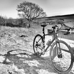 Jumping Downs (»alex«) Tags: bikes cycling cyclocross bicycle trek crossrip tree barham jumpingdowns kent kentdowns wheels bench nature fields shadow blackandwhite blackwhite bw squareformat