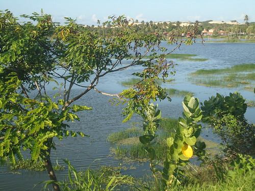 Precabura Lagoon 28.