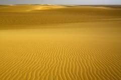 Sáhara. (Victoria.....a secas.) Tags: africa sáhara chad desierto desert dunas dunes