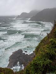 Heceta Head South - Oregon (petechar) Tags: petechar charlesrpeterson landscape ocean hecetahead lighthouse lanecounty oregon highway101 water panasonicg9 leica1260mm ushighway101