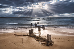 Lines (Rob Reaburn Photography) Tags: groyne sunbeams sunrays crepuscularrays beach ocean waves tide seaweed clouds westernportbay balnarring victoria australia