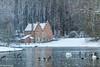 """""""Het spaans huis"""" Tervuren Belgium (Mike Y. Gyver ( Organize in Albums)) Tags: mygphotographiewixsitecommyg2017 myg tervuren belgium brussels belgique winter water bird birds tree history snow"""