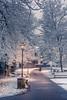 Magic snowfall (Sizun Eye (OFF for a while)) Tags: winter magic scenery sow snowfall parc garden urban streetlight trees banc alley rueilmalmaison hautsdeseine iledefrance france sizuneye nikond750 d750 nikkor nikon50mmf18 50mm