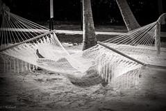 laissez vous bercer ..ou belle partie de pêche (Hélène Baudart) Tags: hamac nb sieste farniente plage mer vacances pied filet
