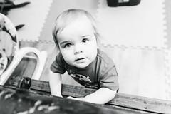 Will - 13 months old (Katherine Ridgley) Tags: toronto torontobaby torontotoddler baby babyboy cutebaby toddler toddlerboy cutetoddler cute boy starwars toddlerfashion fashion r2d2 monochrome blackwhite blackandwhite play toy toys playroom playspace