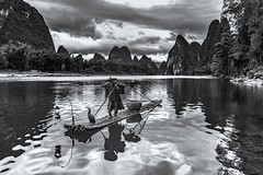 *The Li River Fisherman @ classic pose* (Albert Wirtz @ Landscape and Nature Photography) Tags: albertwirtz liriver fisherman kormoran 20yuanschein theliriverfisherman classicpose landscape blackwhite schwarzweiss bw spiegelung reflections china asien asia guilin berge mountains karstberge paesaggi paysages landschaft natur nature reisen travel explore exploring water wasser flus river stream lebensader xingping guangxi xingpingtown