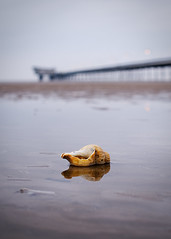 Southport (nickcoates74) Tags: a6300 alpha art artlens beach coast ilce6300 lancashire seaside sefton sigma30mm sony southport 30mmf28dn uk