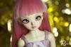 Gally-New Year 3 (Ryina) Tags: bjd balljointeddoll ball jointed doll legit luts kid delf ani kdani