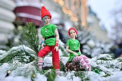 Elfs (Vlastelin Nichego) Tags: dolls abjd bjd lumedoll koitelf koit glühwein limhwa mari
