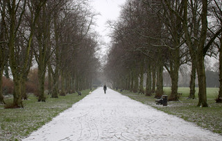 Frozen path at Haslam Park, Preston