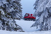 Snowcat | Feldberg | Black Forest | Germany (*Photofreaks*) Tags: winter schwarzwald blackforest germany snow schnee feldberg badenwürttemberg pistenraupe schneeraupe snowcat adengs wwwphotofreakseu