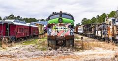 Train Graveyard_MG_0263 (918monty) Tags: abandoned traingraveyards rusty crusty abandonedrailcars