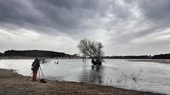 Hikâyeler seni anlatmıyorsa, kendi hikâyeni yaz... Bilecik Pelitözü Göleti/ 10 Şubat 2018. (Ozlem Acaroglu(www.ozlemacaroglu.com)) Tags: bilecikgölpark bilecikpelitözü canon5dmarkiii turkeylandscape turkey