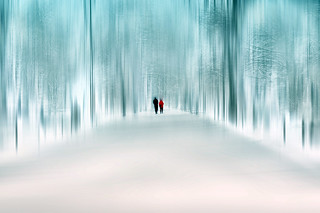 ...I wonder if the snow loves the trees and fields, that it kisses them so gently? And then it covers them up snug, you know, with a white quilt; and perhaps it says,