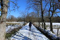 IMG_0253 (rudolf.brinkmoeller) Tags: eifel wandern natur eifelsteig