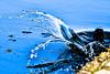 making a splash (Paul Wrights Reserved) Tags: coot splash splashing splashes bird art beautiful
