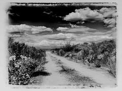 Old Road, Coyote Hills (East of 29) Tags: oldroad coyotehills fullerton orangecounty oilfield bw sliderssunday