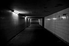 train station (mathias.g) Tags: bw schwarzweiss train station bahnhof tunnel