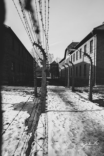 Perimeter Fence. Auschwitz Concentration Camp, Poland.