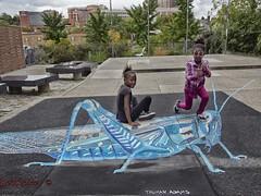 P2700102-CO_LK5 (LeoKoikov 2016) Tags: anamorphicpainting trumanadams painting streetart outdoor hyperrealism chalk art